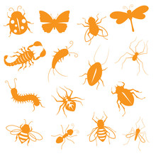 Creepy Crawly Icons