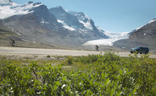 Columbia Icefield Landscape In...
