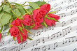 Bouquet of red roses on a background of music notes