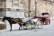 Touristic Horse Carriage in Palma de Majorca