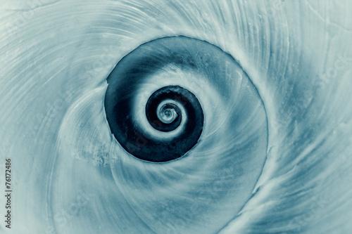 Papiers peints Spirale Cyanotype spiral