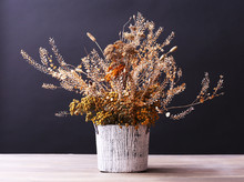 Bouquet Of Dried Flowers In Va...