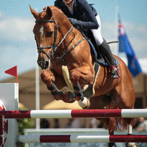 La pose en embrasure Equitation Equestrian
