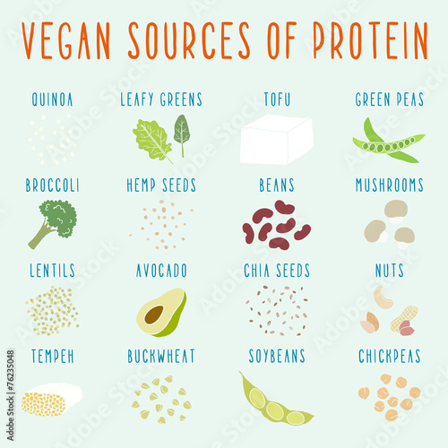 Fotografie, Obraz  Vegan sources of protein.
