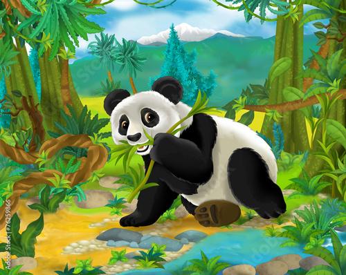 Scena Cartoon - dzikie zwierzęta Azji - Miś panda - ilustracja dla dzieci