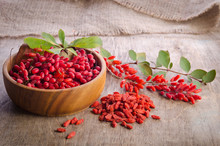Barberry With Leaves And Dry G...