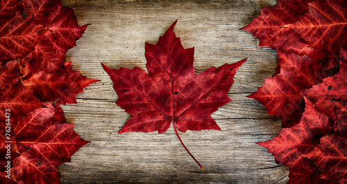 Deurstickers Canada Canadian Flag made out of real Maple Leaves on a Cedar backing