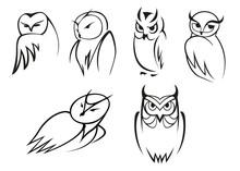 Owl Bird Icons In Doodle Sketc...