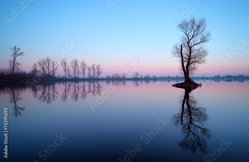 Photo Stands Lake Lake with tree at sunrise, Slovakia