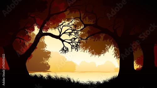 Foto op Aluminium Koraal Horizontal illustration within forest.