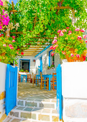 Fototapeta beautiful restaurant in Langada in Amorgos island Greece