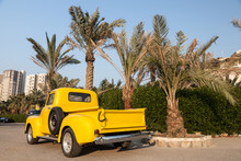 Classic Yellow Chevy Pickup Truck Under The Palm Trees