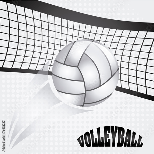 volleyball ball - 76402237