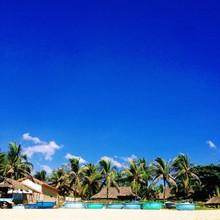Palm Beach With Blue Sky And V...