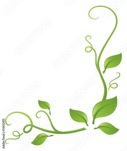 Tableau sur Toile Foliage
