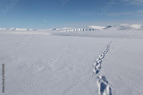 Wandern auf Spitzbergen