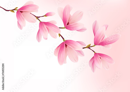 Obrazy Magnolie  tlo-valentine-z-rozowe-kwiaty-wektor