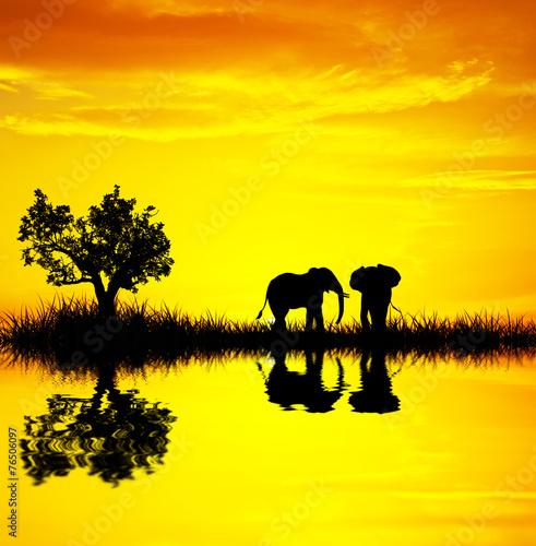 Foto op Canvas Geel el amanecer tiñe de dorado el paisaje