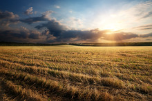 Sunbeams Over Field