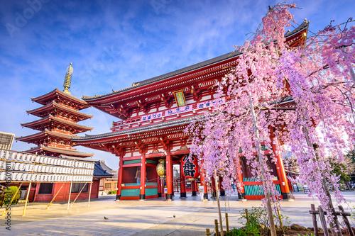 Papiers peints Tokyo Sensoji Temple in Asakusa, Tokyo, Japan