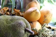 Jackfruit And Canistel/Eggfruit