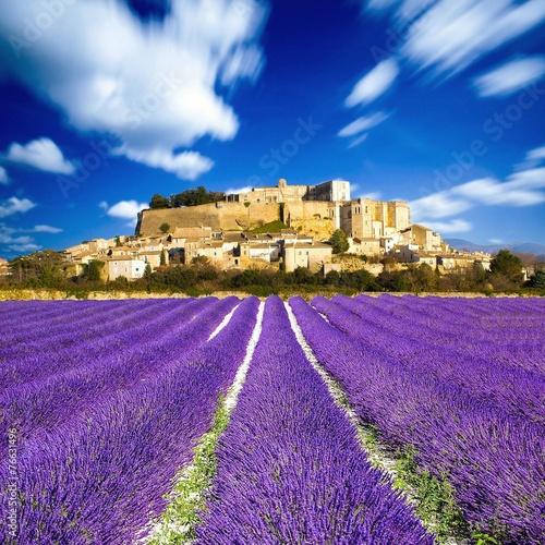 Foto op Plexiglas Lavendel Provence - Lavender fields in France