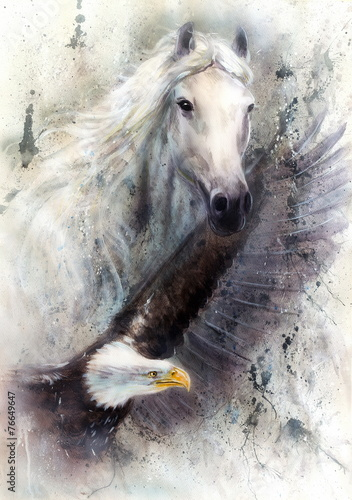 Fototapety, obrazy: white horse with a flying eagle beautiful painting illustration