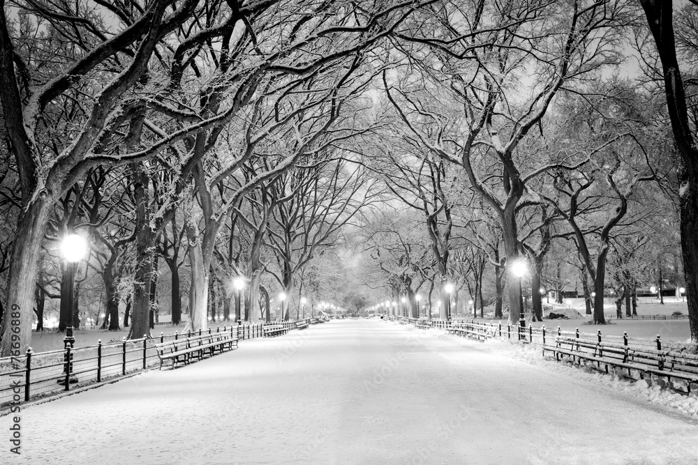 Fototapety, obrazy: Central Park, NY covered in snow at dawn