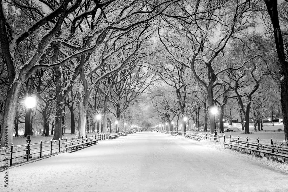 Fototapety, obrazy: Central Park, NY pokryte śniegiem o świcie
