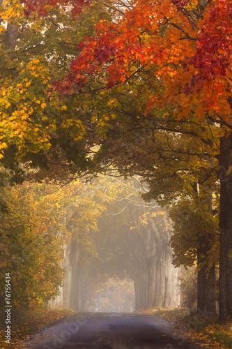 jesien-droga-w-polnocnej-polsce