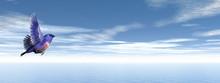 Finch Bird Upon Ocean - 3D Render