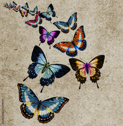 Foto op Aluminium Vlinders in Grunge Butterfly