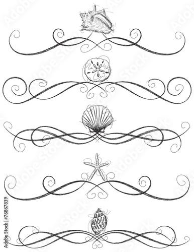 Fotografie, Obraz  Seashell page rules