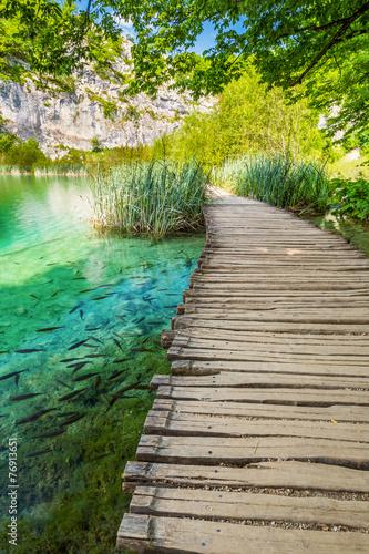 Fototapety, obrazy: Walkway #08, Plitvicer Lakes NP,  Croatia