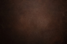 Brown Seat Upholstery Detail T...