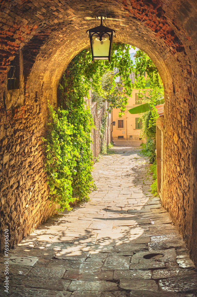 Fototapeta Old streets of greenery a medieval Tuscan town.