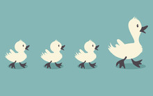 Duck Family Retro Style Colors, Vector Illustration