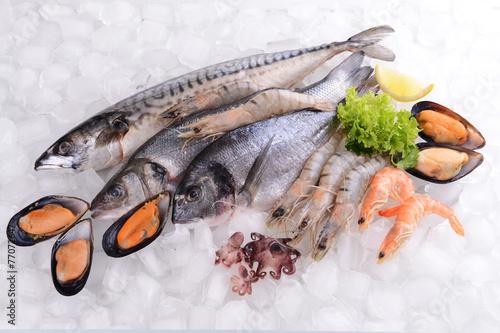Plakat Świeże ryby i inne owoce morza na lodzie