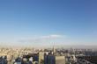 新宿高層ビルから望む夕陽を浴びる東京都心全景