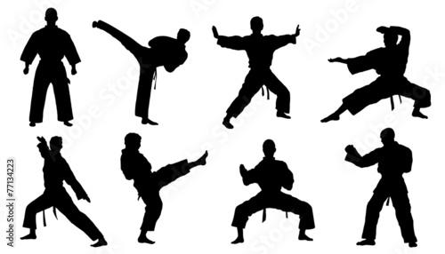 Fototapeta  karate silhouettes