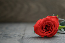 One Red Rose On Oak Wood Table