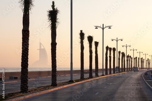 Photo  Palm trees alley at the Palm Jumeirah, Dubai, UAE