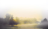Monochrome landscape - 77267601