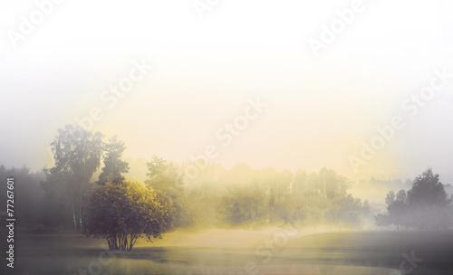 Poster Wit Monochrome landscape