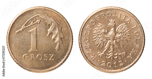 Fotografía  One Polish coin