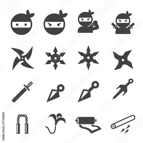 Fotografía ninja icon