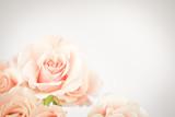 Mein Teegarten - Fototapete