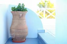 Large Ceramic With Plant Greek...