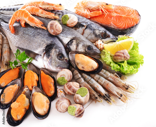 Photo  Fresh fish and other seafood isolated on white