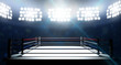 canvas print picture - Boxing Ring In Arena